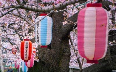 Tokyo's Best Kept Secret: Omokagebashi Bridge