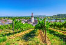 Aerial,View,Of,Vineyards,Rheingau,Wine,Region,,Rudesheim,Am,Rhein